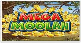 Mega Moolah Casino Jackpottar